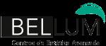 Logo Centros Bellum