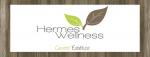 Logo HERMES WELLNESS