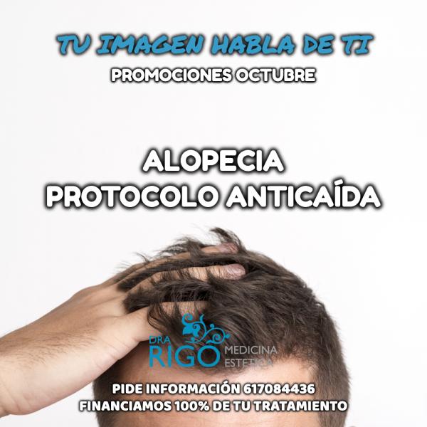PROTOCOLO DE ALOPECIA en TodoEstetica.com