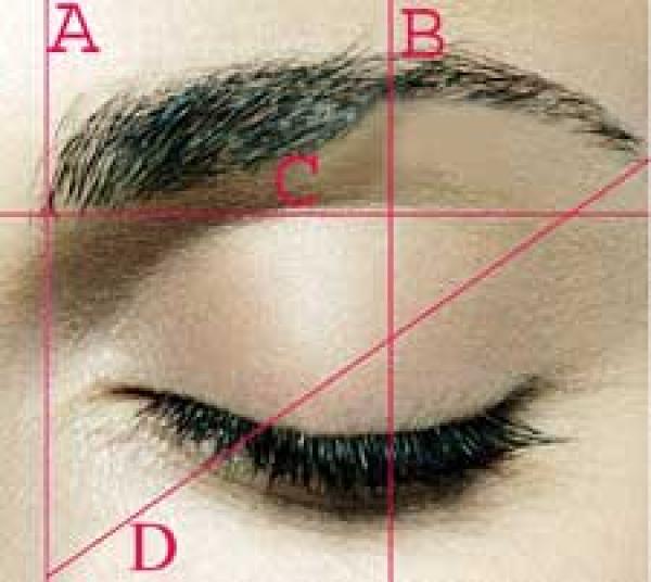 Trasplante capilar en las CEJAS que han perdido el volumen , el pelo totalmente o presentan una alopecia por un piercing o cicatriz  en TodoEstetica.com